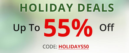 Holiday sale + save 50% Off