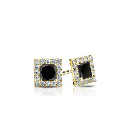 Certified 18k Yellow Gold Halo Princess-Cut Black Diamond Stud Earrings 0.50 ct. tw.