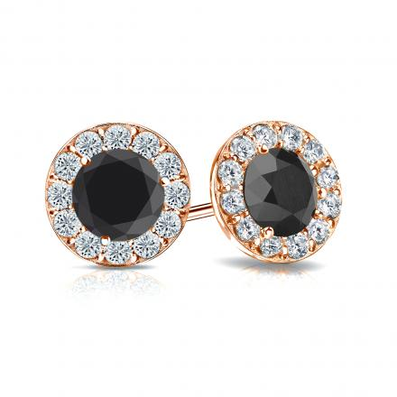 Certified 14k Rose Gold Halo Round Black Diamond Stud Earrings 2.00 ct. tw.