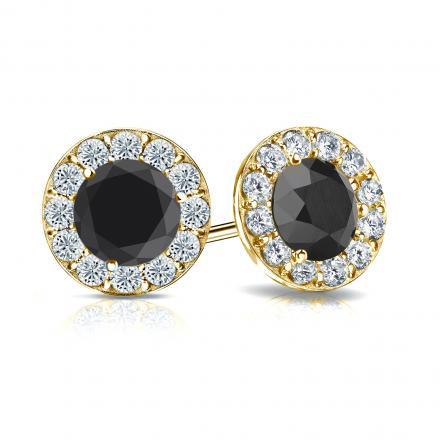 Certified 18k Yellow Gold Halo Round Black Diamond Stud Earrings 2.50 ct. tw.
