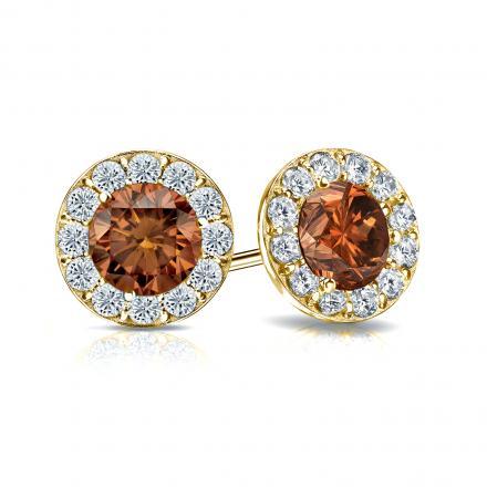 Certified 14k Yellow Gold Halo Round Brown Diamond Stud Earrings 2.00 ct. tw. (Brown, SI1-SI2)