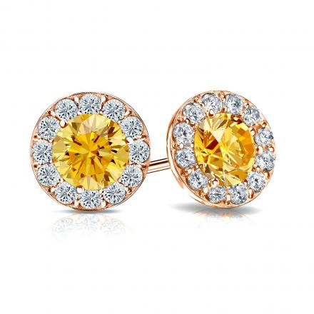 Certified 14k Rose Gold Halo Round Yellow Diamond Stud Earrings 2.50 ct. tw. (Yellow, SI1-SI2)